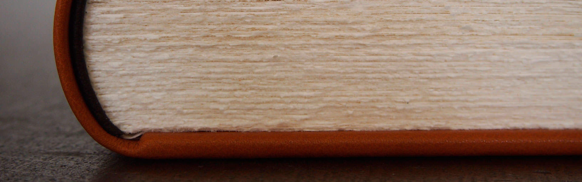 Lederband mit Ebarbeschnitt - Buchbinderei Papierhandwerk